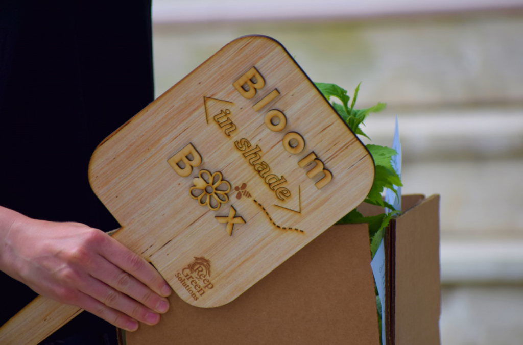 A person holds a sign that says Bloom in shade Box and a cardboard box full of plants