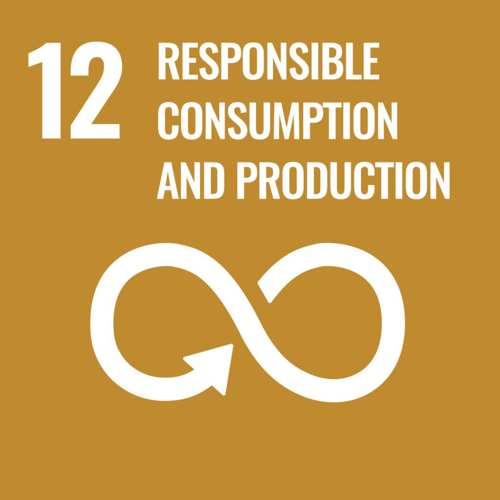 UN Sustainable Development Goal 12 Responsible Consumption and Production