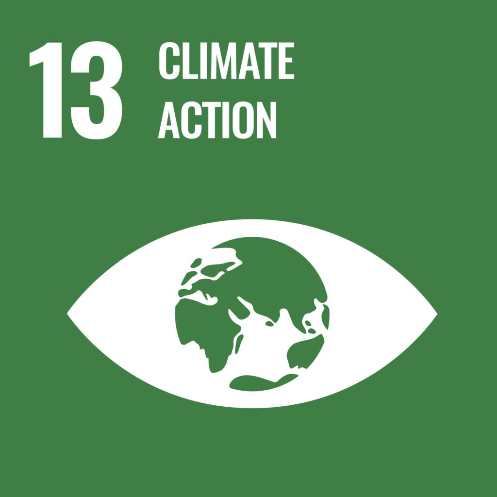 UN Sustainable Development Goal 13 Climate Action