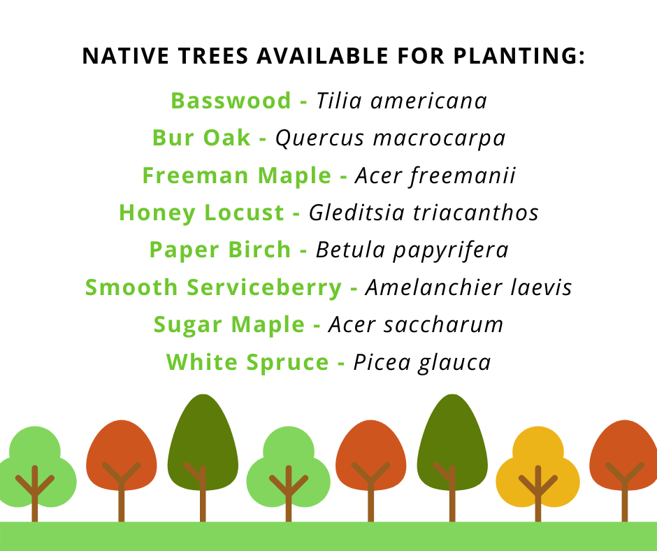 native trees available for purchase