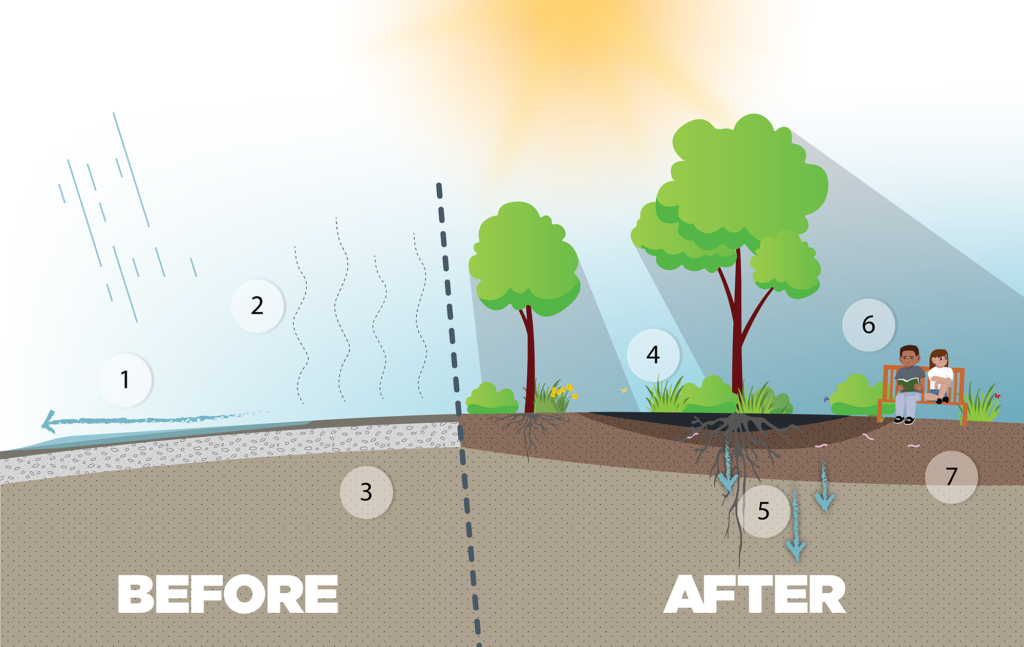 Depave illustrated diagram. Before shows the negatives of pavement. After shows trees, shade, and the benefits of depaving.