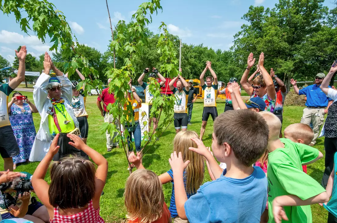 children playing with trees at outdoor event
