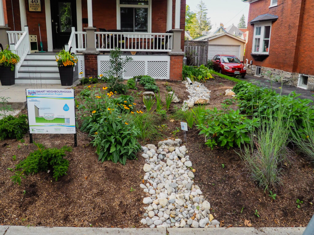 complete rain garden with signage explaining what a rain garden is
