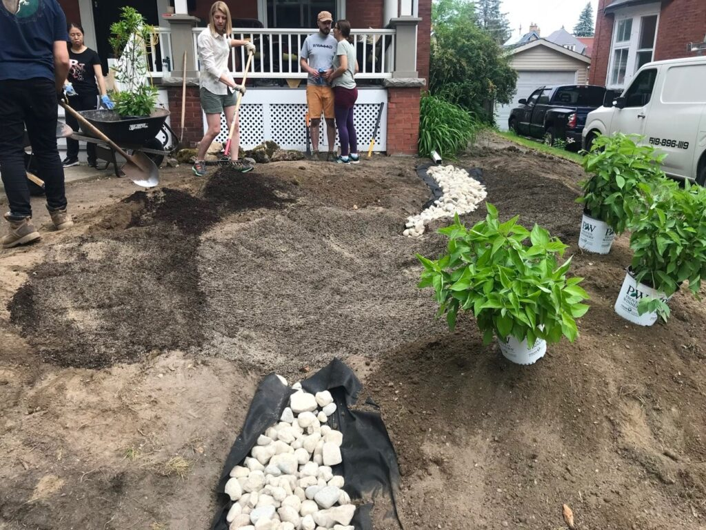 rain garden in progress with plants, rock and people with shovels