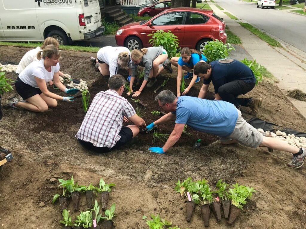 participants planting rain garden plants together